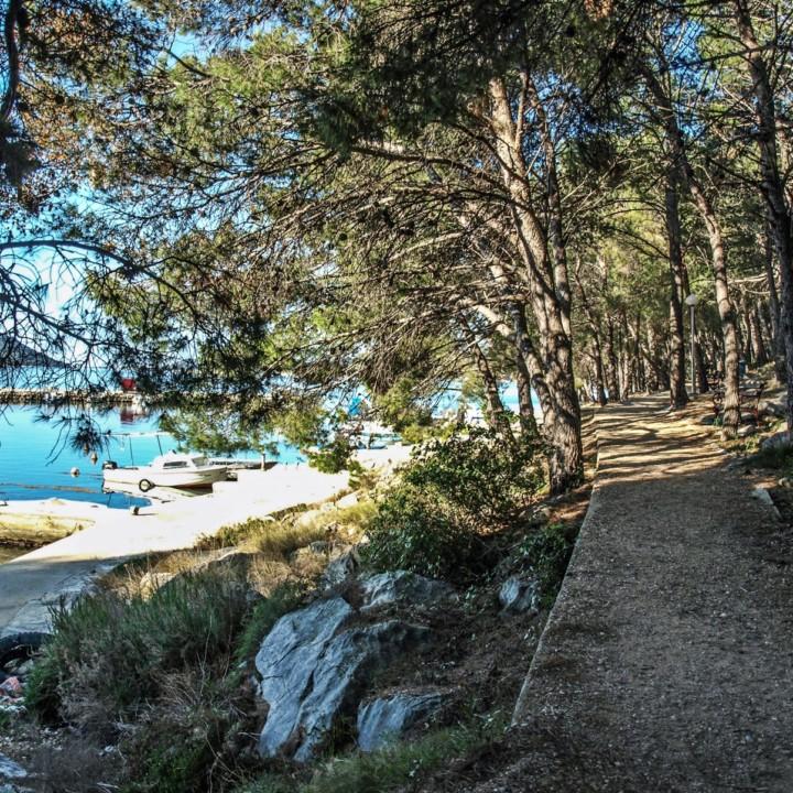 Drage walking trail